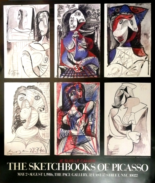 Picasso: The Scetchbooks of Picasso